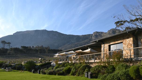 Cape Vineyards - Tagestour Kap der Guten Hoffnung