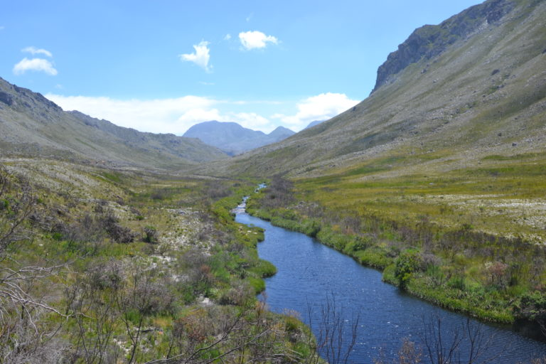 Reise nach Kapstadt - Natur